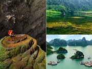 影视对越南旅游业的拉动作用
