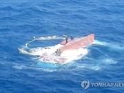 越南外交部领事局:越南与韩国紧密配合搜寻另5名失踪船员