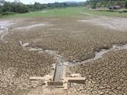 越南宁顺省出现大面积干旱气象灾害