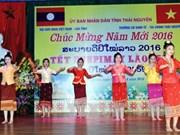 越南太原省举行老挝传统新年庆祝活动