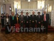 越南参加南方共同市场与东盟贸易促进活动