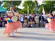 2016年顺化文化节:热闹非凡的街头艺术节