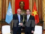 越南国家主席陈大光:越南积极参与联合国工作