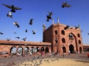 印度推出旅游推广计划 拟吸引来自东南亚国家的大量游客