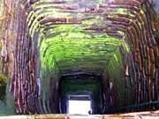 广南省发掘一口近900年历史的占族古井