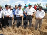 联合国常务副秘书长对越南槟椥省遭受干旱及海水入侵现象造成损失进行实地考察