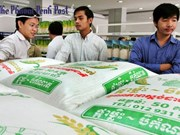 第一季度柬埔寨吸引外资逾4亿美元