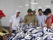 越南政府总理及时指导援助受大批鱼群异常死亡事件影响民众
