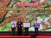 国会主席阮氏金银出席芹苴市丰田县达到新农村建设标准公布仪式