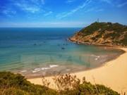 越南旅游业将往哪个方向发展