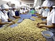 越南腰果对美国出口有望增长