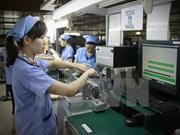 越南劳动者在东盟各国寻求就业机会