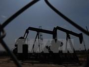 印尼将从伊朗进口大量液化石油气