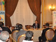 埃及与东盟经贸投资合作研讨会在埃及举行