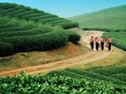 越南木州高原——体验绿色高原上的生活
