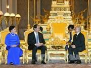 越南国家主席陈大光会见柬埔寨国王诺罗敦·西哈莫尼