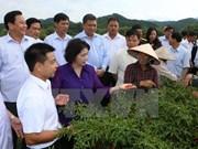 越南国会主席阮氏金银赴谅山省调研