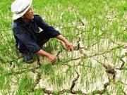 在气候变化影响面前保障人权