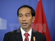 印尼优先推动纳土纳群岛经济发展