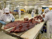 越南企业扩大对日本投资经营范围