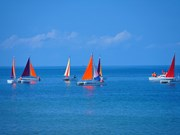 广平首次举行帆船游行和展示活动