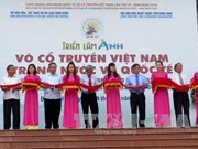 """""""越南与世界传统武术""""图片展在平定省举行"""