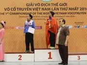 越南传统武术世界锦标赛:越南体育代表团居奖牌榜榜首