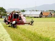 力争2020年前达到新农村建设标准的乡份总数约占50%     农民收入增加近一倍
