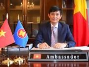29届外交会议:文化外交助推越南与各国的友好关系