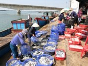 越南水产加工出口协会要求台塑集团对越南中部水产出口企业负起责任