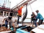 保护海洋环境:为沿海地区发展带动偏远地区发展注入动力