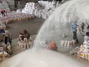 越南中标向菲律宾出售15万吨大米