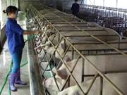 富寿省努力提高农村劳动者职业技能培训工作质量