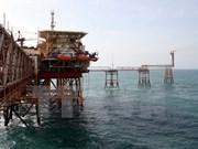 越南在俄罗斯Nhenhexky自治区13个油田进行石油勘探开采活动