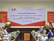 """""""英国退欧对越南与德国产生的影响""""研讨会在越南举行"""
