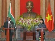 国家副主席邓氏玉盛与南非副总统西里尔·拉马福萨举行会谈