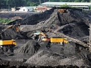 越南煤炭矿产工业集团为2017年后国内煤炭需求量做好准备