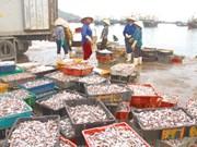 清化省海洋经济发展与新农村建设并行