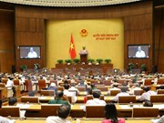 越南第十四届国会第二次会议发表第四号公报