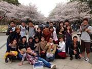 旅居日本关东地区北部三县的越南人总数猛增