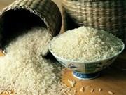 泰国为稻农推出10亿美元贷款计划