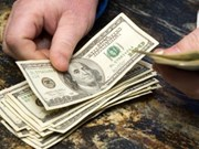 越盾兑美元中心汇率上涨13越盾