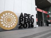 越南在推进APEC合作进程中发挥积极作用