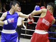越-日拳击友谊赛:越南队取得4胜