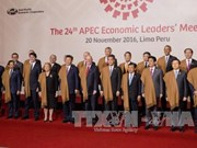 APEC成员国对越南2017年APEC会议抱有巨大期望