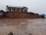 越南各地出现特大暴雨 造成重大人员伤亡和财产损失