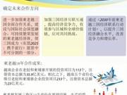图表新闻:柬老越发展三角区第十届峰会取得圆满成功