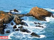妙趣横生的龙爪礁