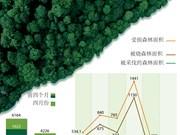 图表新闻:越南毁林犯罪案件明显下降