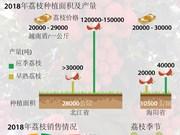 图表新闻:越南荔枝产量创十年来新高